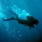 Alger Underwater Preserve