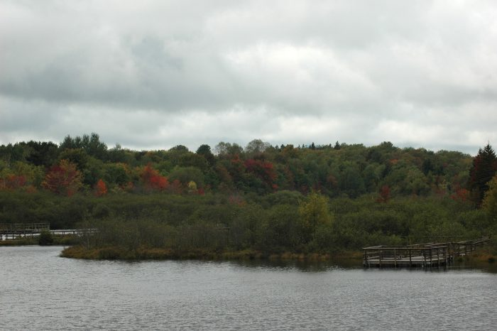 overlooking pond on H13